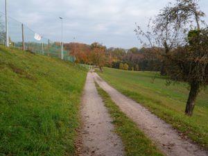 21728249-Ferienwohnung-2-Weilheim (Baden-Württemberg)-300x225-16