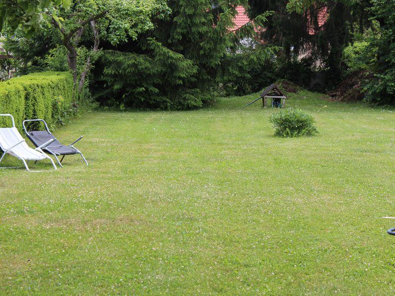 21728755-Ferienwohnung-3-Wernigerode-800x600-16