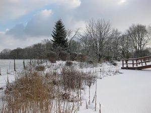 19287619-Ferienwohnung-3-Westerstede-300x225-94