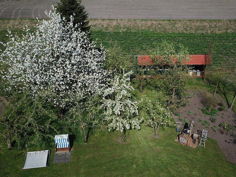 19287620-Ferienwohnung-2-Westerstede-800x600-157