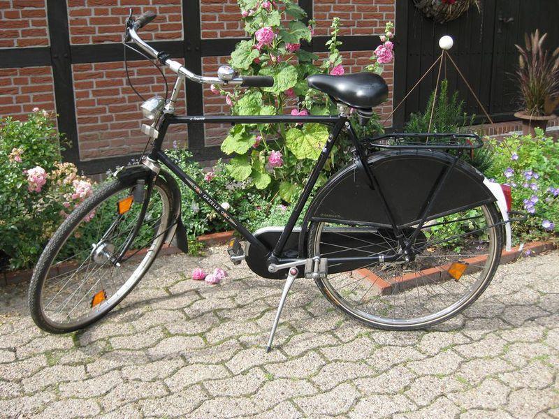 19297400-Ferienwohnung-2-Wiefelstede-800x600-16
