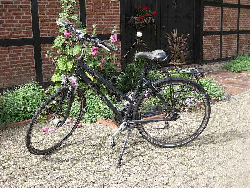 19297400-Ferienwohnung-2-Wiefelstede-800x600-18