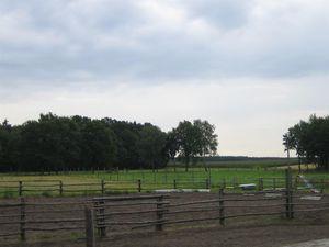 18659492-Ferienwohnung-4-Wietzendorf-300x225-17