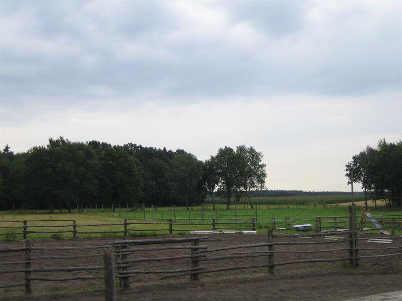 18659492-Ferienwohnung-4-Wietzendorf-800x600-17