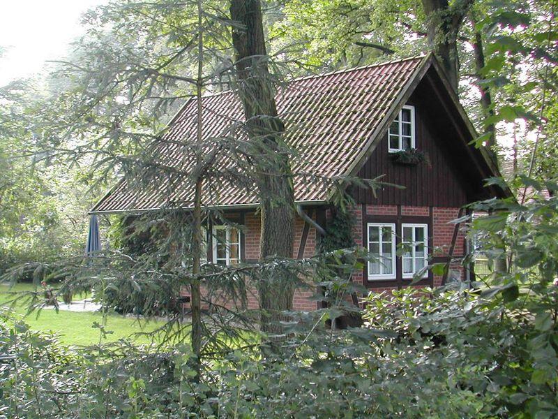 21919399-Ferienwohnung-5-Wietzendorf-800x600-19