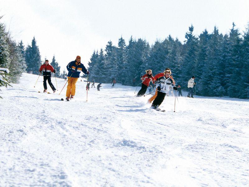22119269-Ferienwohnung-2-Winterberg-800x600-44