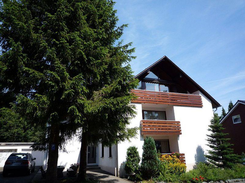 22128551-Ferienwohnung-6-Winterberg-800x600-0
