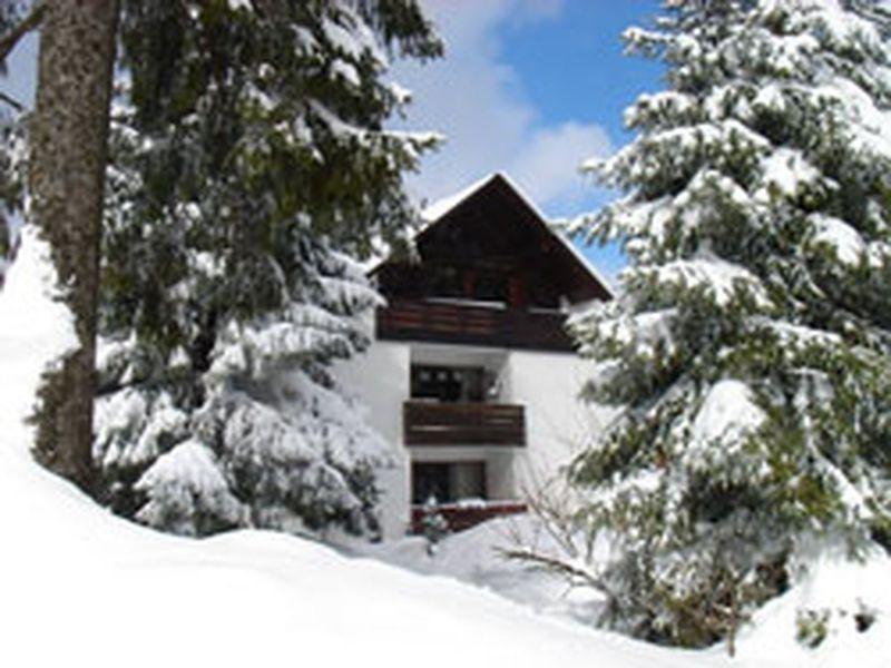 22128551-Ferienwohnung-6-Winterberg-800x600-1