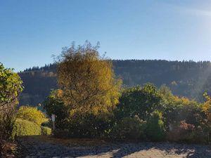 22125809-Ferienwohnung-4-Winterberg-300x225-4
