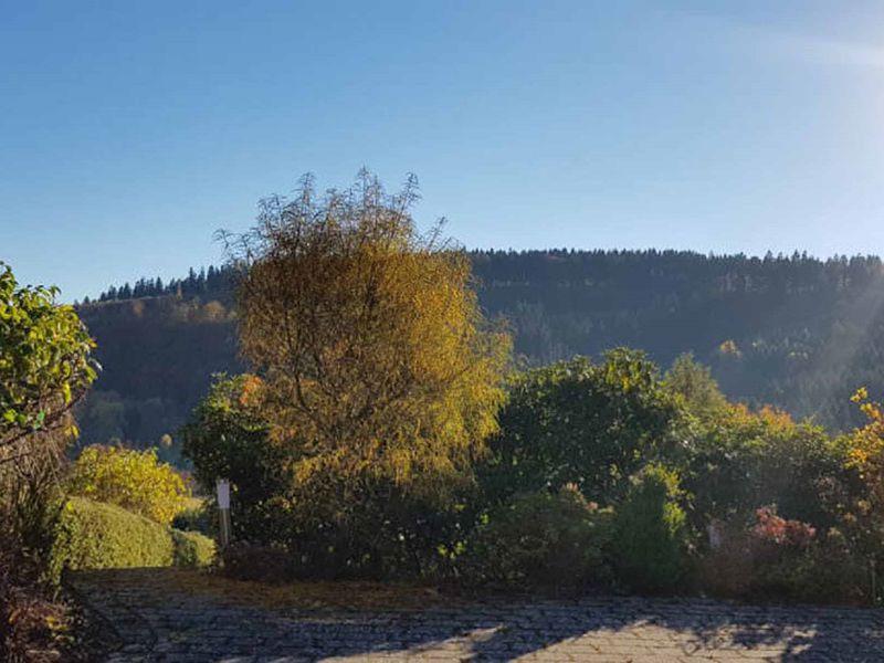 22125809-Ferienwohnung-4-Winterberg-800x600-4