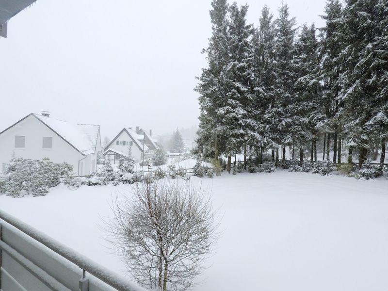 22139997-Ferienwohnung-2-Winterberg-800x600-7