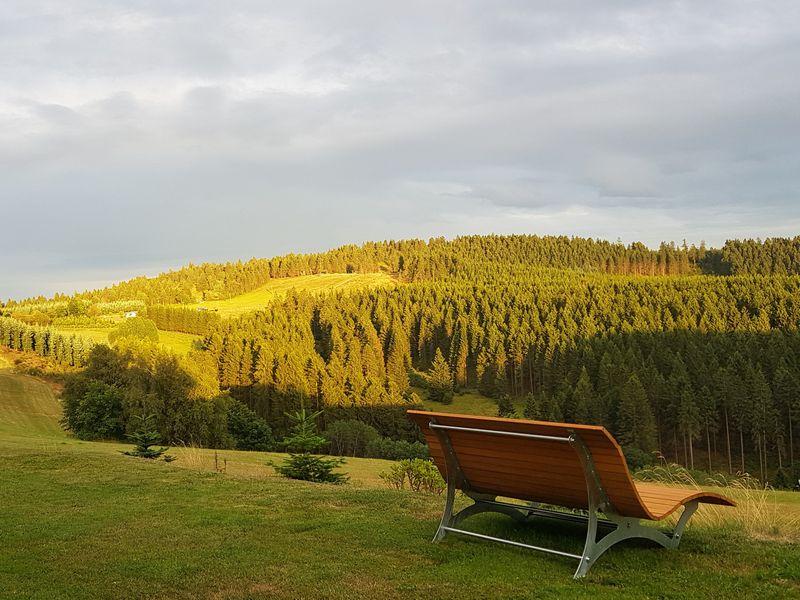 22119261-Ferienwohnung-4-Winterberg-800x600-12