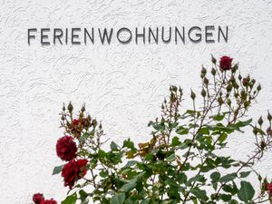 22142223-Ferienwohnung-6-Winterberg-300x225-5