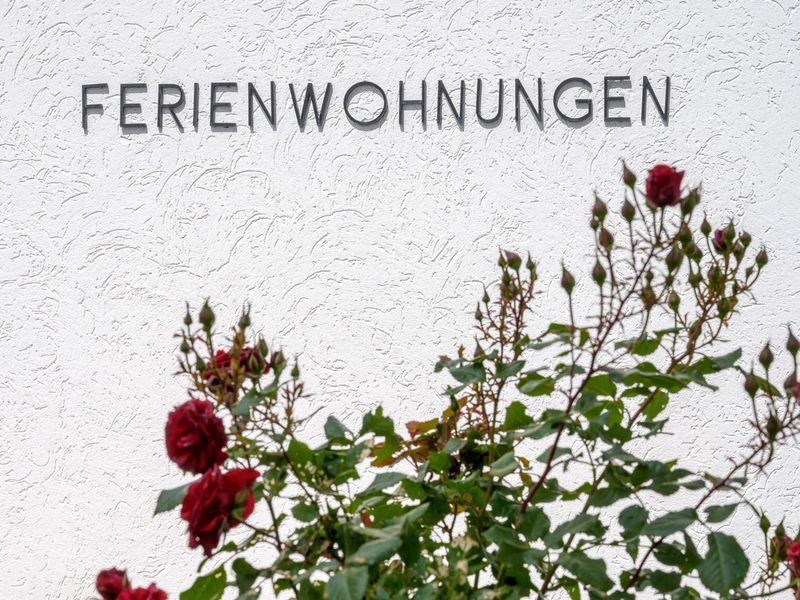22142223-Ferienwohnung-6-Winterberg-800x600-5