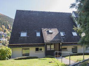 Ferienwohnung für 4 Personen (100 m²) ab 57 € in Winterberg