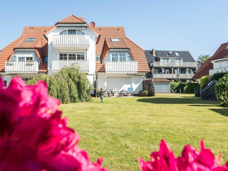 21667753-Ferienwohnung-4-Zingst (Ostseebad)-800x600-0