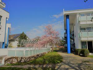 Ferienwohnung für 4 Personen (53 m²) ab 61 € in Zingst (Ostseebad)